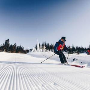 Instruktor narciarski. szkolenia indywidualne dla dzieci idorosłych, Szczyrk, Beskidy, Sitnuś, Sport District